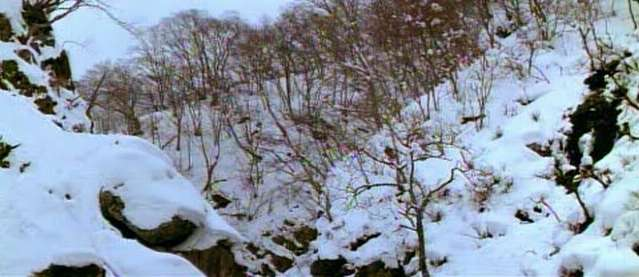 Could also be Nagano, near Shiga Kogen