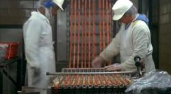 Frankfurter production line - quality control