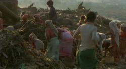 Hunting for food and goods in Mumbai garbage dump.