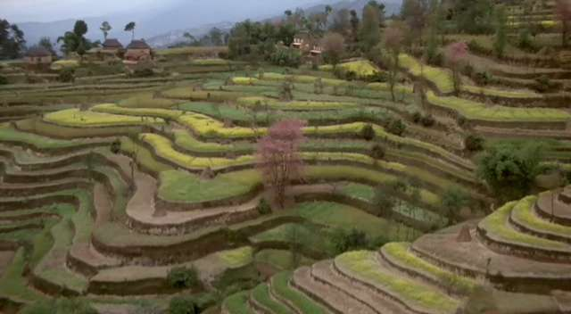 Rice Terraces in the Philippines:  Ifugao Province, Cordillera Region